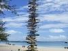 01_stocking_island