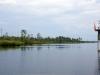 29_alligatorriver