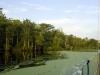 36_pasquotank_river