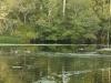 38_pasquotank_river