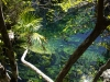 07_cenote_escondida