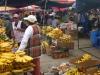 25_bananenmarkt