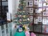 weihnachtsbaum_bibliothek