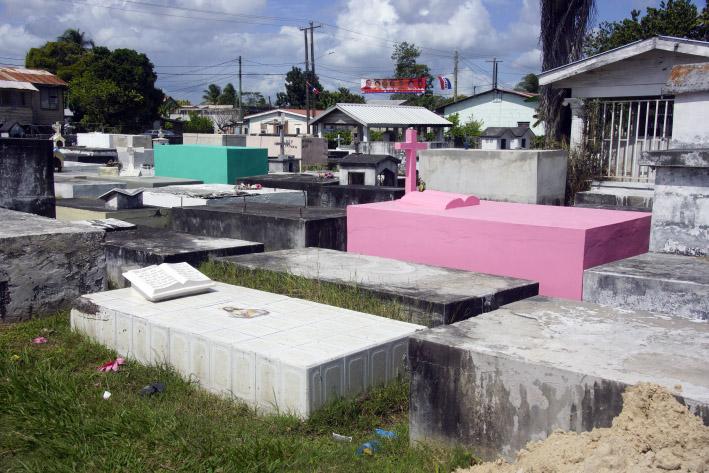 A1_pinkfarbenes_grab