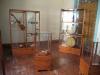 museum_musikinstrumente
