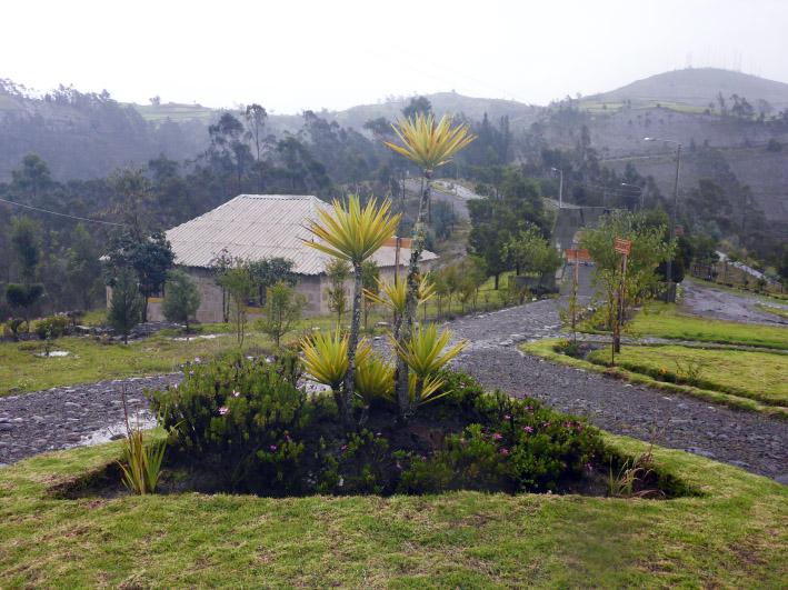 museo_garden