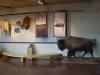 12_museum_innen