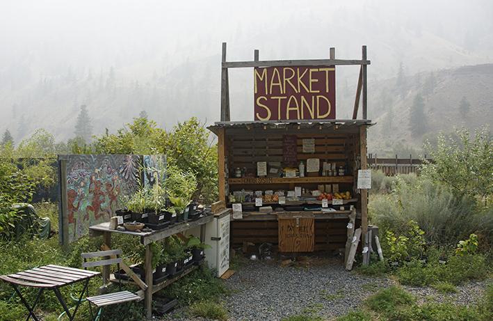 15_marktstand_des_vertrauens