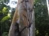 18_termiten_strassen
